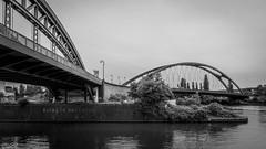 Harbour Bridges (Christoph Wenzel) Tags: frankfurt deutschland blackandwhite sigma16mmf14dcdn sonyalpha6000 stadt bw architektur hessen frankfurtammain