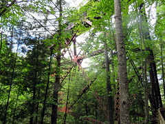 Infrastructure in the woods (yooperann) Tags: tall trees iron trusses railroad trestle upper peninsula michigan ontonagon county