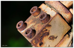 Rusty Bolts (Bear Dale) Tags: a part rusty old tractor that i found abandoned bush ulladulla southcoast new south wales shoalhaven australia beardale lakeconjola fotoworx milton nsw nikond850 photography framed nature nikon nikkor afs micro 105mm f28g ifed vr d850 bolts