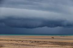 Seul sur la plage de jullouville avant la pluie, Normandie. (chapichapo2012) Tags: tempête normandie plage jullouville nuage orage