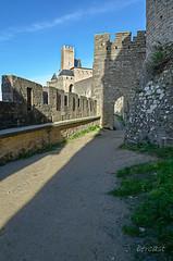 CARCASSONNE-  -OCCITANIE-la CITE-_DSC0456 (bercast) Tags: aude carcassonne chateau chateaumedival france lesremparts occitanie ue bc bercast lacitédecarcassonne lamuraille