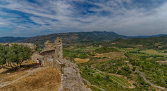 View from Aguilar keep (Bendigoish) Tags: vineyard valley view château castle keep wideangle fisheye hdr