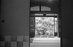 Tatami room (odeleapple) Tags: voigtlander bessa r2m norton classic 35mm yellowfilter kodaktmax400 film monochrome analog bw tatami room interior