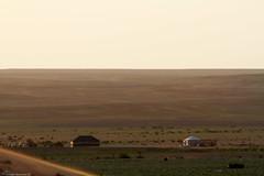 Bedouin lifestyle (mosa3ad alshetwi) Tags: put tent camels civilization city milk sunset sandhorsebackdesartnicegreat desart nature natunal ngc travel saudiarabia saudi
