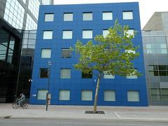 Tegenwind (Merodema) Tags: city stad gebouwen kaal leeg modern fietsers boom blauw groen