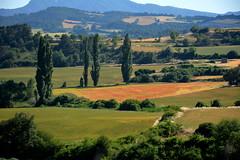 Santa Coloma de Queralt, camí dels molins (Angela Llop) Tags: tarragona concadebarberà catalonia