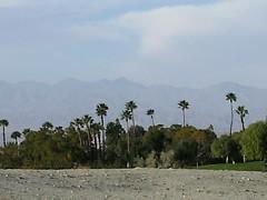 Img0512 (rugby#9) Tags: outdoor california usa america us sky cloud view tree trees palmtree palmtrees mountains