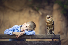 boy with owl (Irena Rihova) Tags: owl bird birds animal animals wild boy child children kid portrait young preschool nature bench bokeh