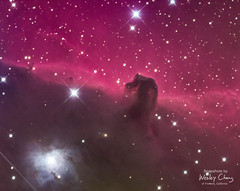 Horsehead Nebula (with the Refelction Nebula IC 4592) (theordinaryphotographer) Tags: nebula horseheadnebula barnard33 winter hydrogen hydrogenalpha lrgb astrophotography orion reflectionnebula ic4592