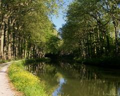 IMGP2186 (Dnl75) Tags: canal canaldumidi france