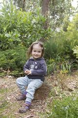a nice rock to sit on (louisa_catlover) Tags: portrait family child toddler daughter tabitha tabby garden outdoor nature karwarra kalorama dandenongs melbourne australia autumn march