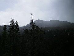 Img0520 (rugby#9) Tags: view america us california palmsprings usa outdoor cloud clouds sky mountsanjacintostatepark mountain tree trees