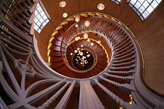 Spiral Down (lfeng1014) Tags: heals london england uk spiralstaircases spiraldown architecture spiral fisheye canon5dmarkiii ef815mmf4lfisheyeusm lights railing stairs travel lifeng