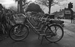 Hires bikes, Chiswick, London, 2019. Film 125013 (richardhunter3) Tags: olympus om2 35mm ilford delta 3200 black white film street chiswick hire bike pedal cycle london