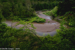 EM-190601-POST-002 (Minister Erik McGregor) Tags: erikmcgregor nyc newyork photography 9172258963 erikrivashotmailcom ©erikmcgregor usa photooftheday cattarauguscreek gravelbar creek water waterislife woods intothetrees trees forest walkinthewoods magicplaces intothewoods path trail hiking outdoors habitat nature outdoorlife roadtrip amazingplanet springishere green olmstedcamp sardinia naturephotography nikonphotography nikon