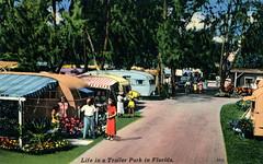 Florida Trailer Park Vintage Postcard (Phillip Pessar) Tags: florida trailer park vintage postcard