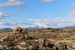 Hekla ... (alfheidur magnus) Tags: hekla álfheiður© mthekla eldfjall volcanoes volcano hraun lava