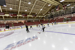 Harvard Scrimmage (MA Hockey League) Tags: allston brightlandry scrimmage pickupgame harvard wide ma usa