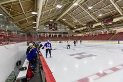 Harvard Scrimmage (MA Hockey League) Tags: ma harvard wide scrimmage allston pickupgame brightlandry usa