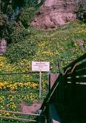 Capitola, California (bior) Tags: capitola california shore santacruz fujicahalf kodakgold expiredfilm cliffs sign warning danger