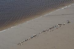 Conwy-E6101738 (tony.rummery) Tags: abstract beach conwy em10 mft microfourthirds omd olympus rocks sand tide wales unitedkingdom