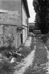 negligence with ignorance (Other dreams) Tags: grudziądz poland negligence building trash grass overhaulneeded industar10 fomapan200 summer 2019
