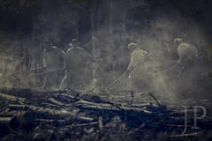 Telkkämäki slash-and-Burn (JP Korpi-Vartiainen) Tags: finland june kaavi pohjoissavo telkkämäki agriculture burn casque countryside fire forest forestry grove kaski kaskiviljely kesä kesäkuu luonto maaseutu man metsikkö metsä metsämaa mies nature perinteinen polttaa puu savu savuinen slashandburn smoke smoky spinney summer traditional tree tuli työ työmenetelmä viljely woodland woods work worker working