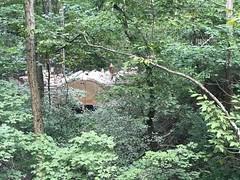 Woodland Garden Stone Bridge (The Parklands of Floyds Fork) Tags: theparklandsoffloydsfork theparklands mossgibbswoodlandgarden woodlandgarden hiking trails broadrunpark louisville kentucky parks stonebridge
