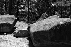 My Rock Collection (makaila3) Tags: summer blackandwhite outdoors photography rocks park tribblemill