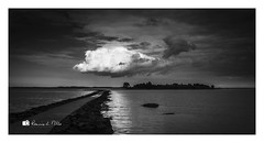 White Cloud Travelling... (RonnieLMills 7 Million Views. Thank You All :)) Tags: white clouds rough island islandhill reflections strangford lough comber newtownards mono bw blackandwhite