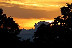 Sunset on the shortest night (JaaniicB) Tags: canon eos 77d tamron 70300 di vc usd sunset color yellow orange trees tree clouds sun dawn