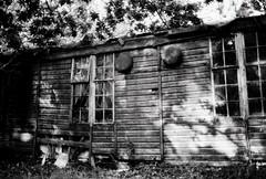 Abandoned lab (a.pierre4840) Tags: olympus om3 zuiko 35mm f2 35mmfilm kosmofotomono100 bw blackandwhite noiretblanc abandoned derelict ruined decay windows shadows dorset england fotor