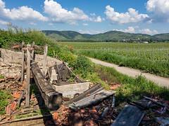 da war mal ein Weinkeller (naurithron) Tags: jahreszeit sommer sport furthbeigöttweig loweraustria austria