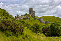 Corfe Castle 20 June 2019 00078.jpg (JamesPDeans.co.uk) Tags: nationaltrust dorset corfecastle forthemanwhohaseverything england britain europe gb wwwjamespdeanscouk greatbritain printsforsale unitedkingdom landscapeforwalls jamespdeansphotography uk digitaldownloadsforlicence