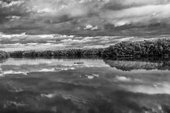 Ding Darling NWR (Jim Liestman) Tags: dingdarlingnwr lake clouds reflection