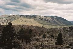 Mono-Inyo Craters (poavsek) Tags: landscape film mountains volcanic trees greatbasin kodak sierra portra160 california