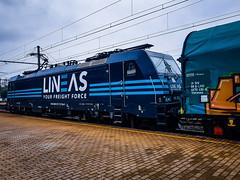 LINΞΛS 186 293 met shimmns wachtend @ Hasselt (Avinash Chotkan) Tags: lineas yourfreightforce bombardier traxx br186 cargo trains belgium shimmns 186293