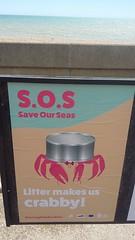 20190621_130903 (tod20@rocketmail.com) Tags: save our seas