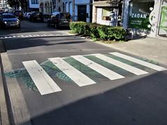 Cee Pil / Tolhuislaan - 21 jun 2019 (Ferdinand 'Ferre' Feys) Tags: gent ghent gand belgium belgique belgië streetart artdelarue graffitiart graffiti graff urbanart urbanarte arteurbano ferdinandfeys ceepil