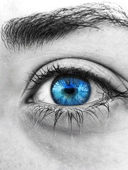 Blue eye (Gábor.Siska) Tags: huaweiphotograpy huaweiphotographers hungary huaweiphoto huawei huaweip30pro p30series p30pro leica quadcamera quadleica macro supermacro eye blue blueeye blackwhite face colorsplash snapseed