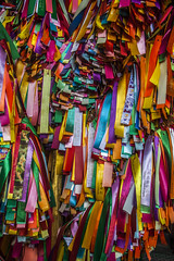 Rainbow pray - Penang (Out Of The Map) Tags: wish wishribbons penang malaysia solotravel travel explore buddhist kekloksitemple travelsolo outofthe outofthemap plary religion prier deseo hope desear colorido couleur colourfull viaja voyage pray buddha