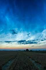 The shortest night (with noctilucent clouds) (derliebewolf) Tags: noctilucentcloud clouds noctilucent sunset summer night nightclouds astrophotography morethanwords flickrfriday landscape portrait nightsky nightlights bluehour field summersolstice