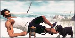 ► ﹌ Lay on sand.﹌ ◄ (яσχααηє♛MISS V♛ FRANCE 2018) Tags: swank lushposes rezzroom equal10 anastyle avatar artistic art avatars events roxaanefyanucci poses photographer posemaker photography lesclairsdelunedesecondlife lesclairsdelunederoxaane models modeling designers secondlife sl slfashionblogger shopping styling style fashion fashiontrend virtual blog blogger blogging bloggers bento