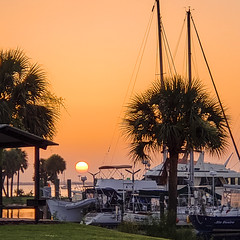 Happy Summer Solstice (mimsjodi) Tags: sunrise cellphone sky water tree palmtrees titusvillefl grass boats