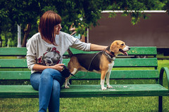 Young woman with cute beagle dog on the bench (Artem Beliaikin) Tags: happy pet dog love woman cute park nature outdoor friend female bench girl puppy animal summer together play smile sunny day leisure sunglasses young street brunette relax stylish lady beagle friendship beautiful people lifestyle sitting caucasian hugging cheerful person happiness outdoors attire weekend enjoy outfit fashionable morning pets white dogs