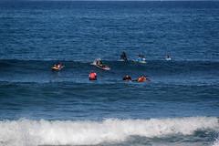 Costa Adeje, Santa Cruz de Tenerife, Canary Islands, Spain (wildhareuk) Tags: canaryislands canon canoneos500d costaadeje sea spain tamron18270mm tenerife tenerife2019 water wave playalasamericas surfing tamron img9481dxo