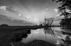 _LS_0875-1 (Paio S.) Tags: sunset bw blackandwhite sky clouds landscape canon water creek trees reflections sun light