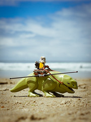 Beach Patrol (thereeljames) Tags: lego starwars stormtrooper beach summer canon toyphotography toys toyphotographers