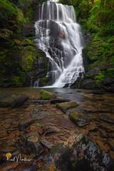 Eastatoe Falls (again) (Reid Northrup) Tags: rrs nature eastatoefalls forest landscape longexposure moss nikon northcarolina reidnorthrup river rocks scenic stream trees water waterfall