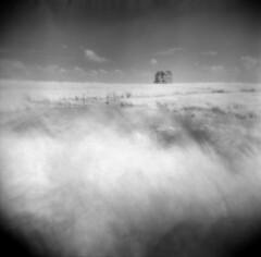 A Long Way From Home (Comtesse DeSpair) Tags: efke ir820 infrared abandoned farmhouse diafine holga 120n